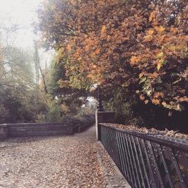 #autumnal